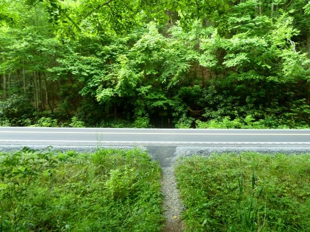 Road Crossing At Allen Gap