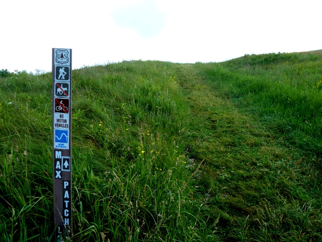 Max Patch Loop Sign